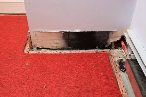 WSS_Water_Security_System_WoodFloor_Mould