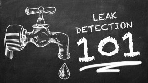 LeakDetection101